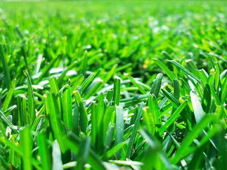 http://medias.aktifimmo.com/photos_immo_formats/902_678/10090/10090996_1.jpg?1579274817