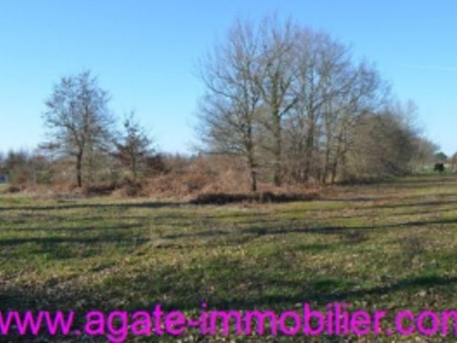 http://medias.aktifimmo.com/photos_immo_formats/902_678/9327/9327265_1.jpg?1541758757