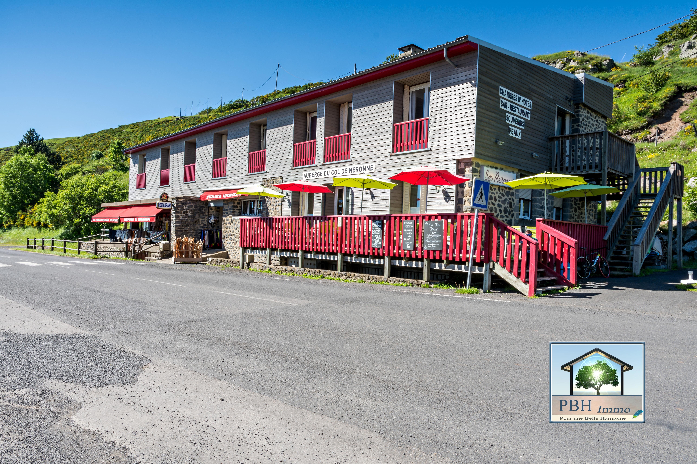 VenteBureau/LocalSALERS15140CantalFRANCE